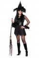 Witch (Adult - Sexy Feathered)